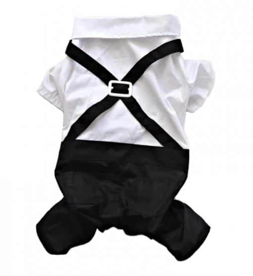 Formal Black And White Dog Tuxedo Back View