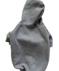 Gray Dog Hoodie Back View